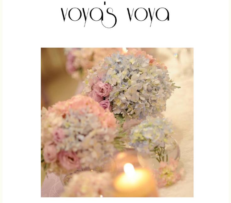 voya's voya_web