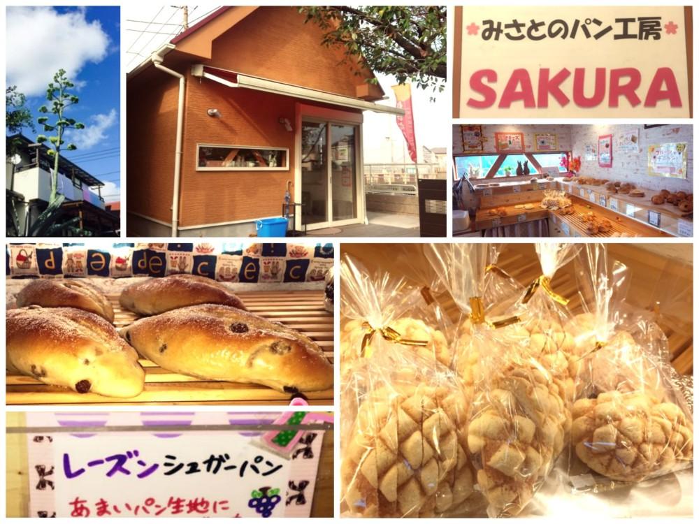 fotojet-collage-sakura-misatopi