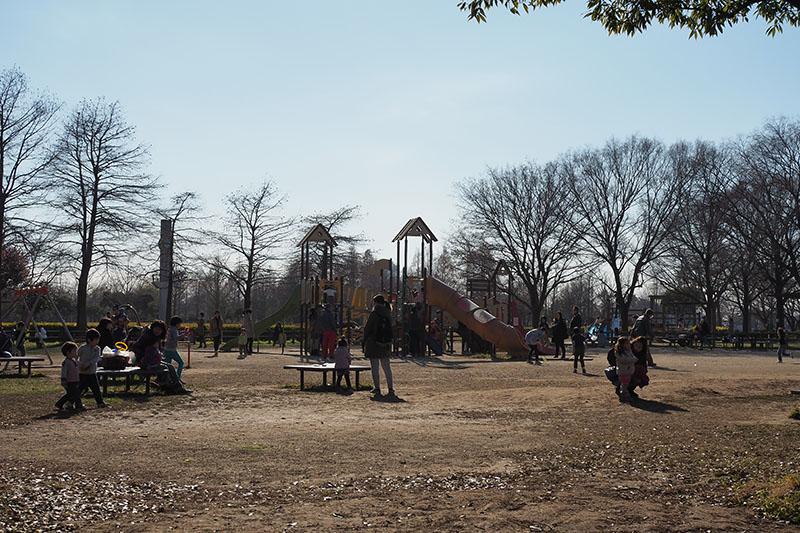 公園 みさと